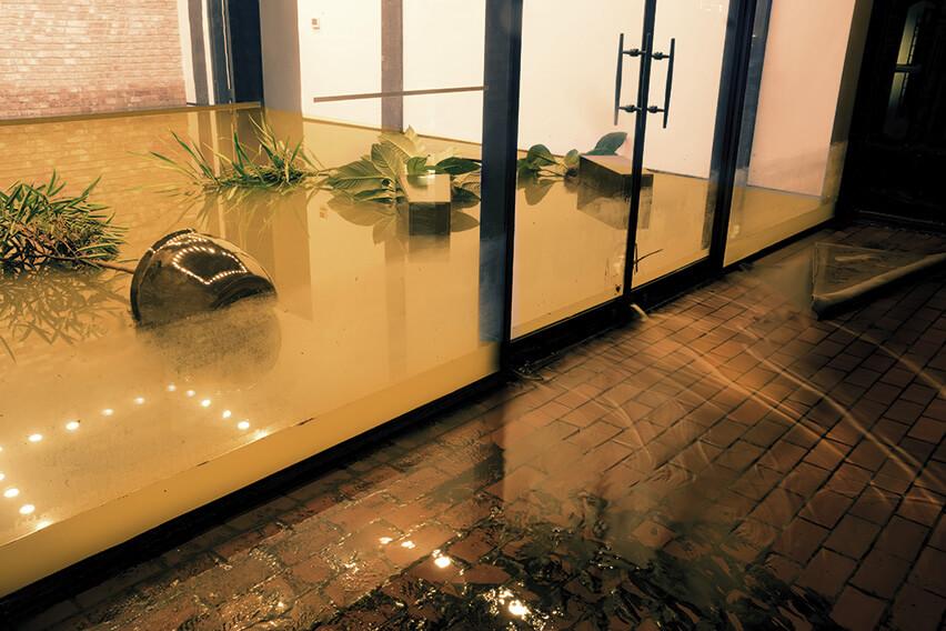 Recuperació d'espais inundats, SM SAVALL